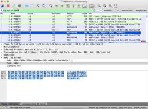 wireshark_masked_trace